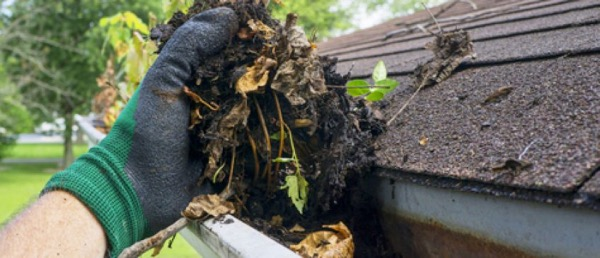 Gutter Cleaners Indiana